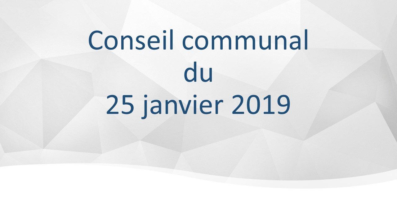 Conseil communal du 25 janvier 2019