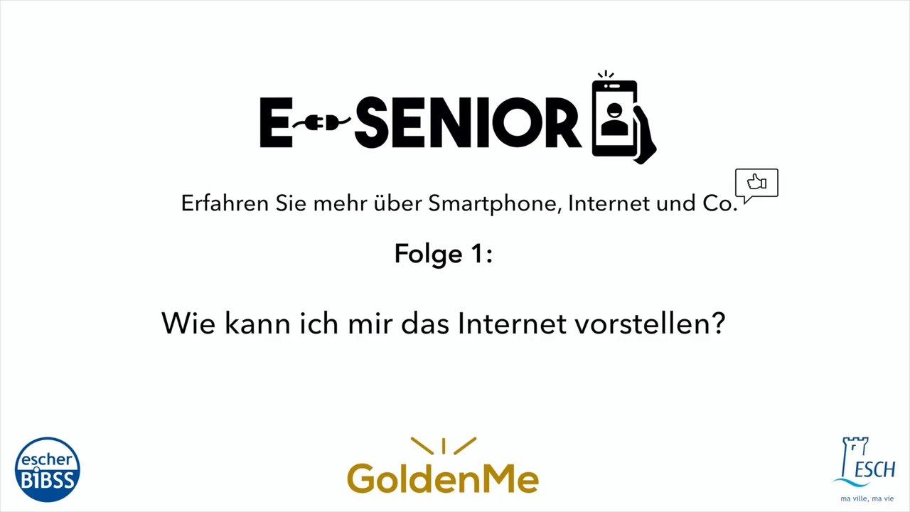 Escher BiBSS - e-Senior - Internet